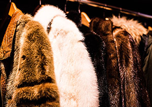 Rail of fur coats in different colors
