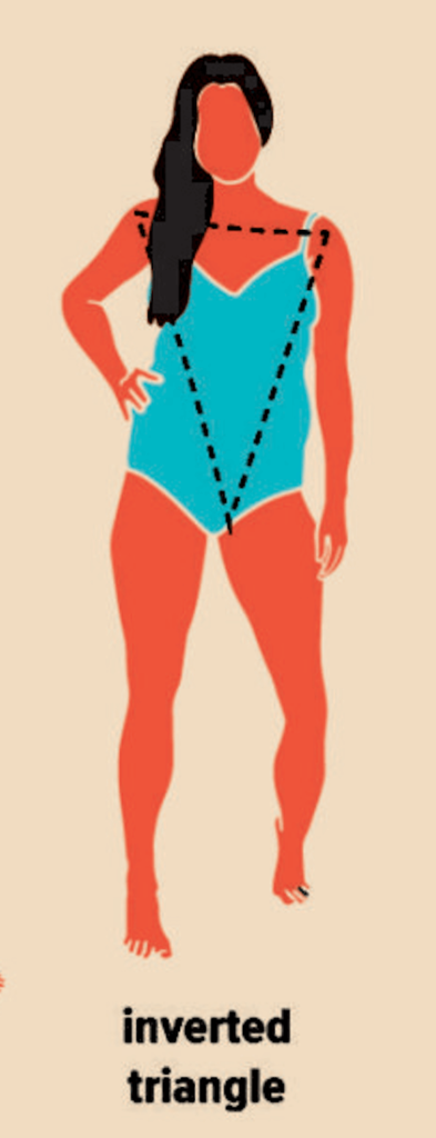 drawing of a woman with an inverted trinagle body type